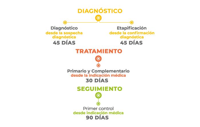 cancer colorectal ges ca măsură preventivă